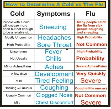 cold vs flu
