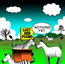 zebra lost and foung
